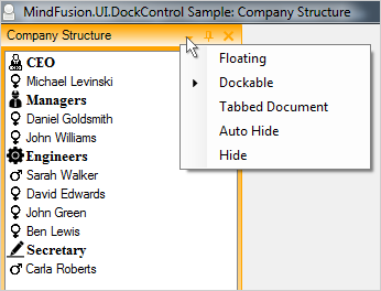 MindFusion Layout Manager: Dock Styles